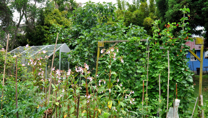 gardens-022