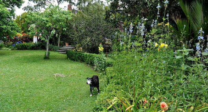 gardens-031
