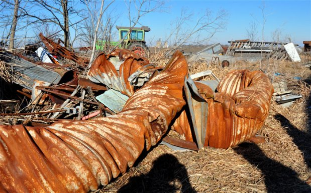 junk-yard-dog-023