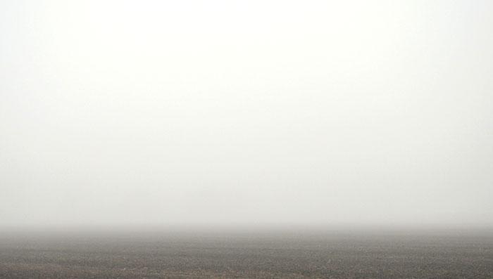 misty-0172