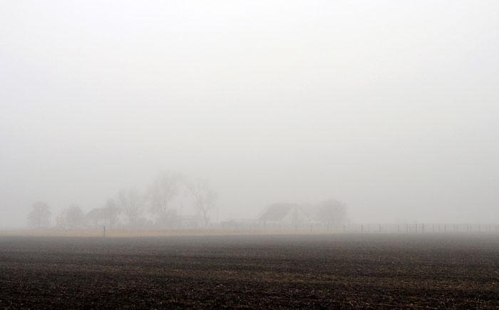 misty-0181