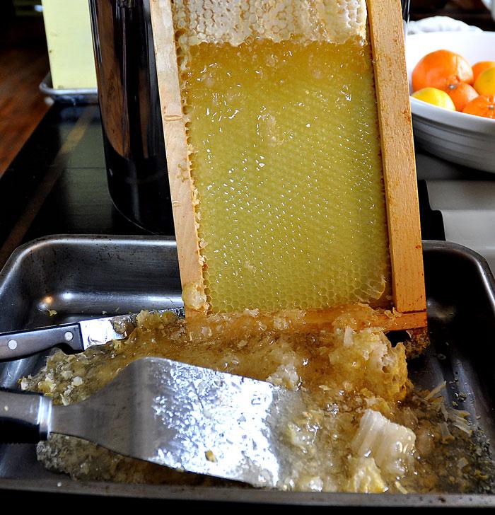 honey-003