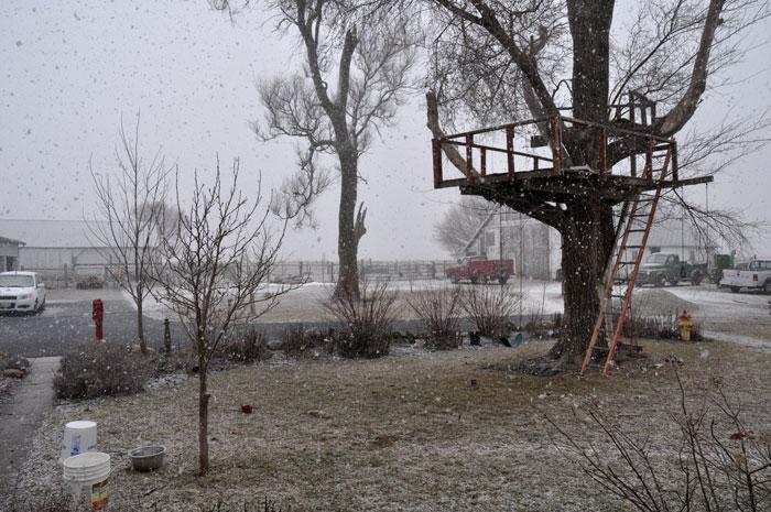 snow-tag-008