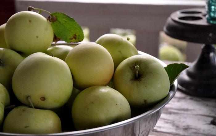 apples-015