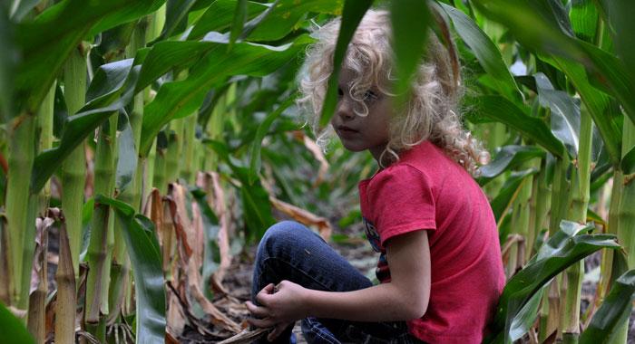 corn-children-002