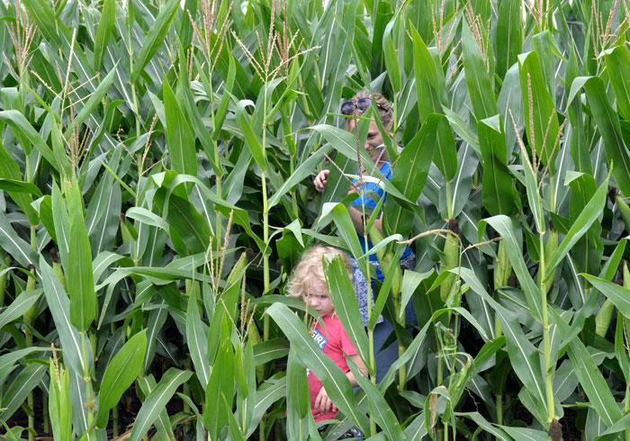 corn-children-023