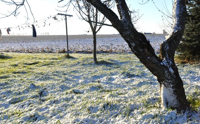 snow3-043