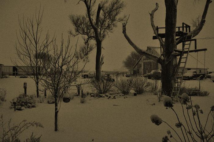 snow23-013
