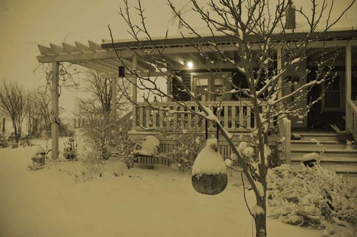 snow23-024