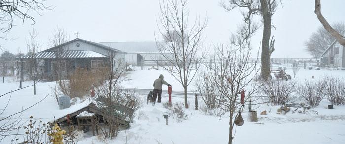 blizzard-006