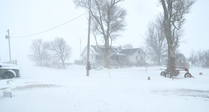 blizzard-021