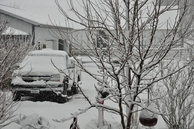 wet-snow-006