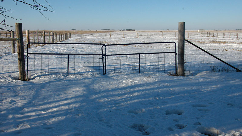snow and gates