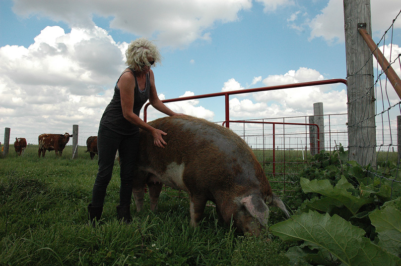pig and woman