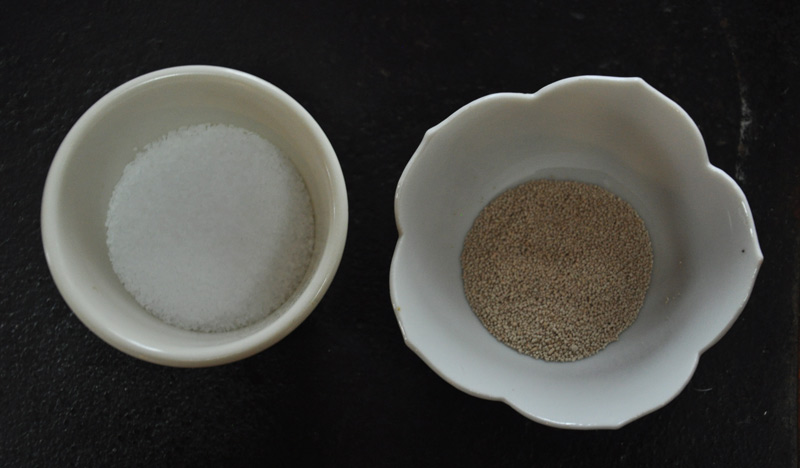yeast and salt2