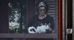 cat-028