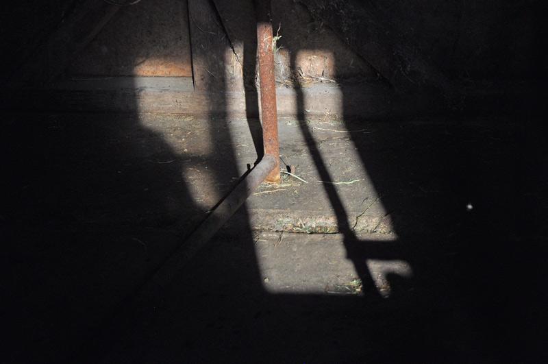 shadows-001