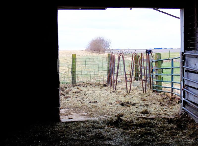farm-001