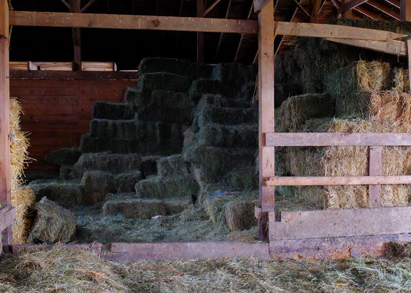 farm-003