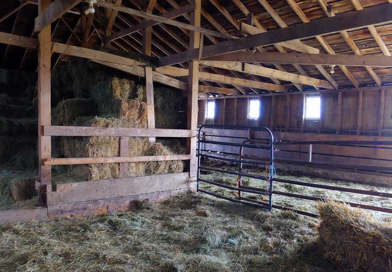 farm-004