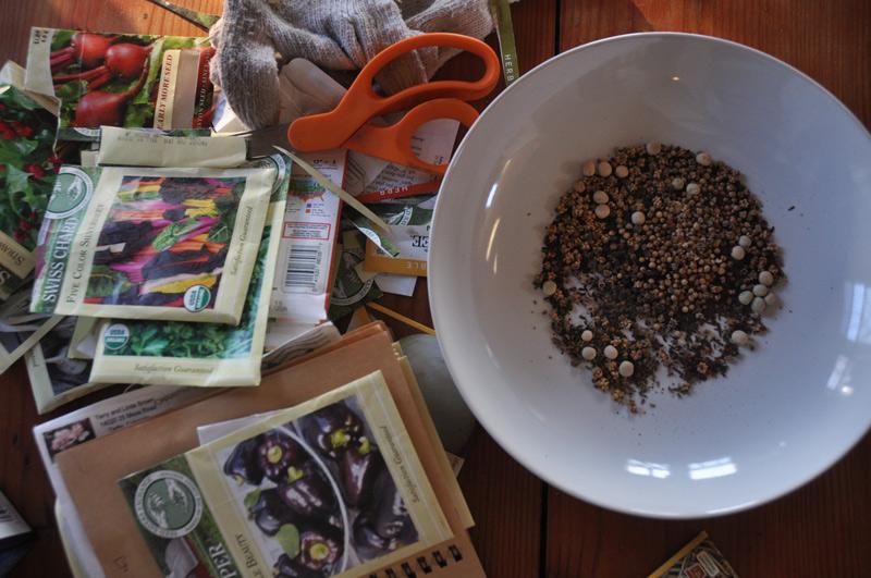 seeds-002