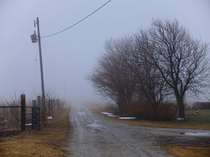 fog-039
