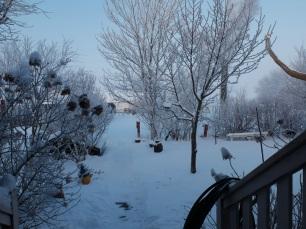 snowy-005