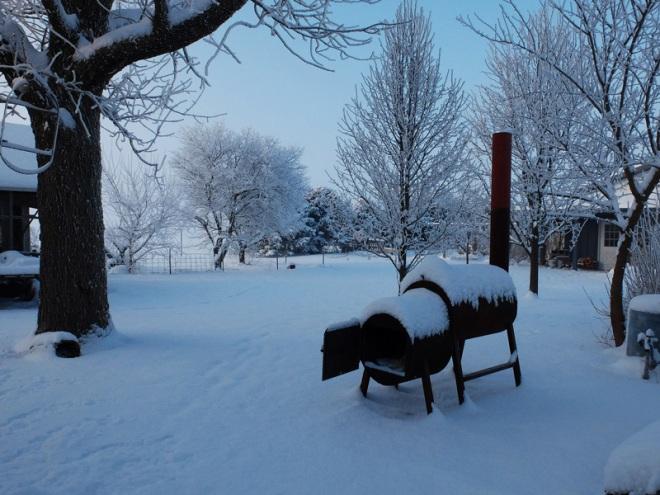 snowy-014